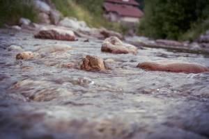 river-1_02060625.jpg